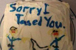 sorry-i-tased-you-cake-via-imgur