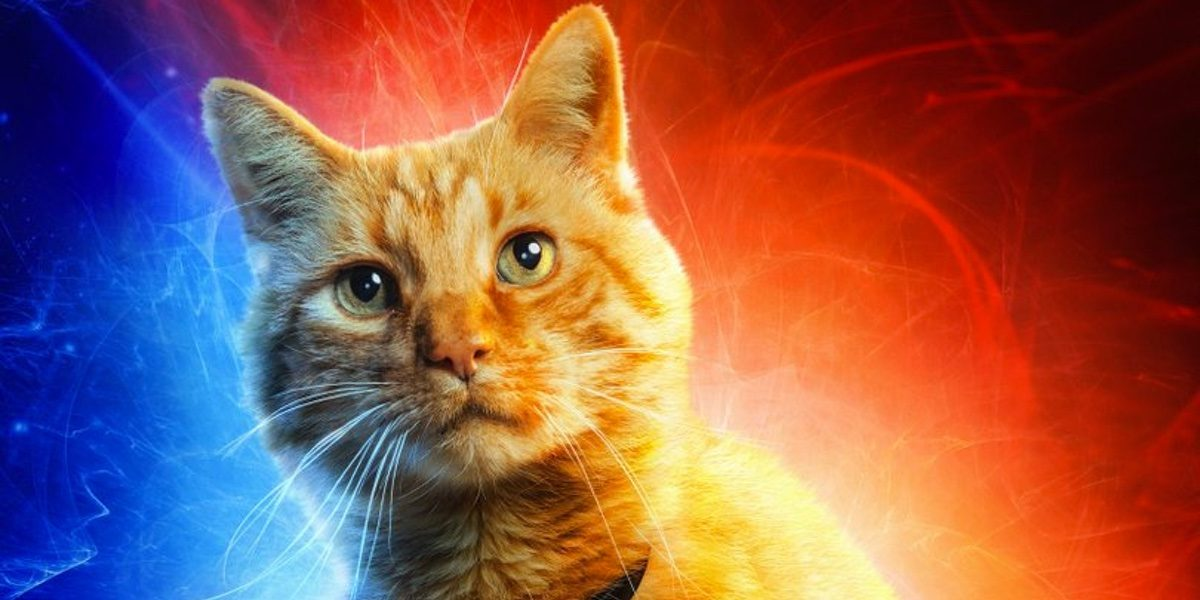 Captain Marvel new character posters tease old friends, new faces, and Goose the cat.