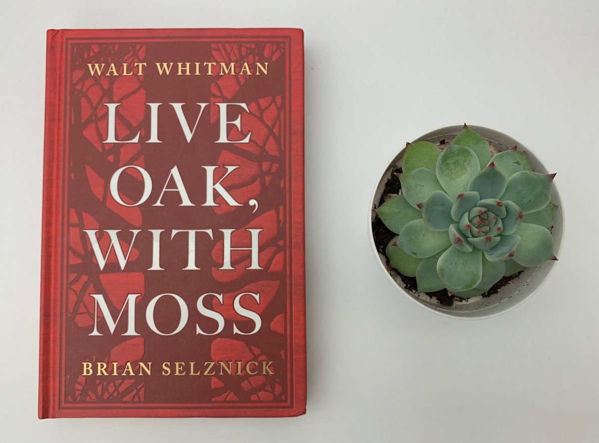 Live Oak, with Moss Whitman book