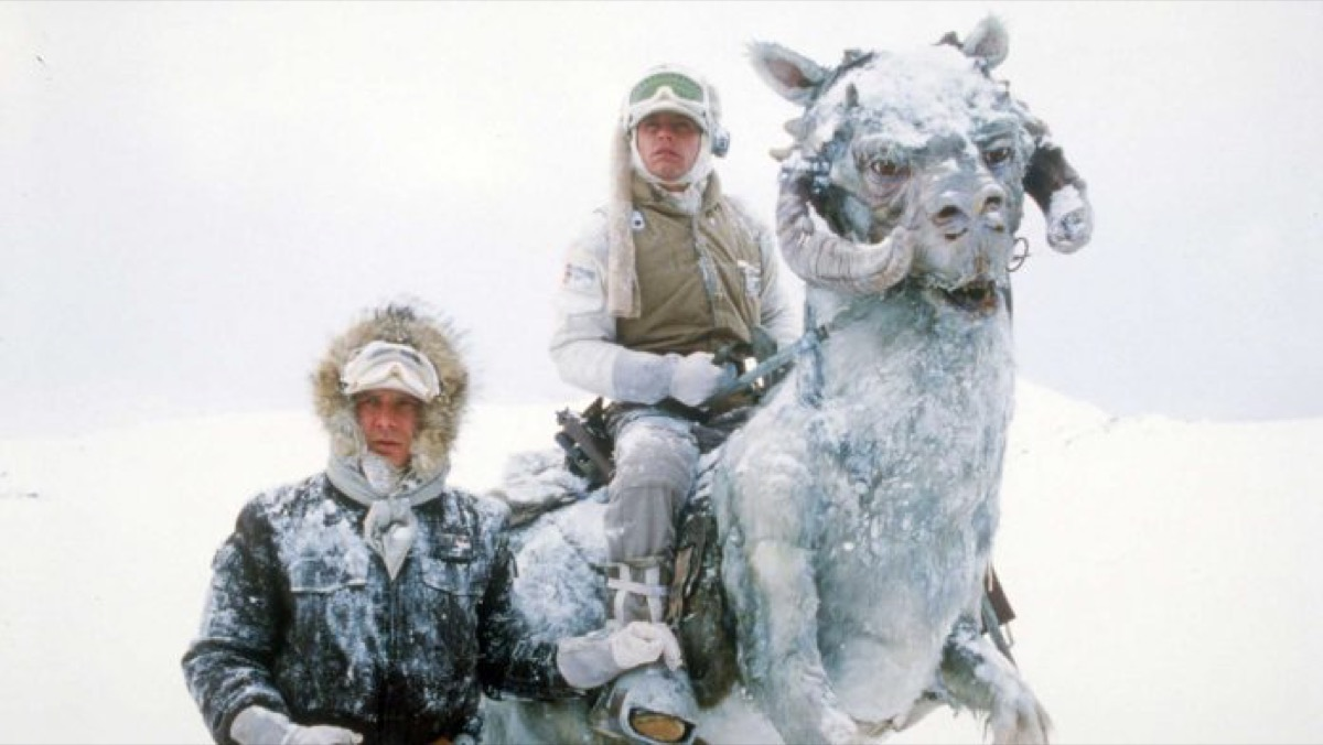 Han Solo and Luke Skywalker with a tauntaun in the snow of Hoth in Star Wars: The Empire Strikes Back.