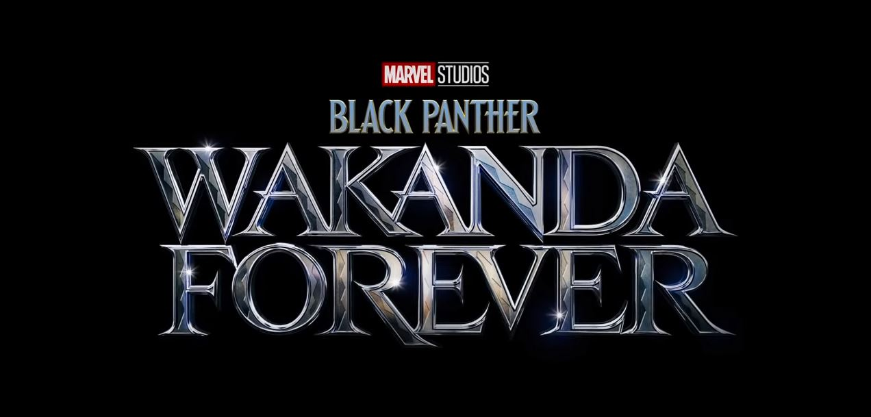 Black Panther Sequel Officially Titled Wakanda Forever and No, My Heart Isn't Ready, Thanks for Asking